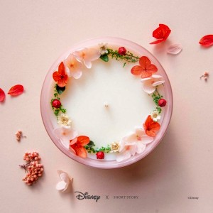 Disney: Triple Scented Soy Candle - Mulan