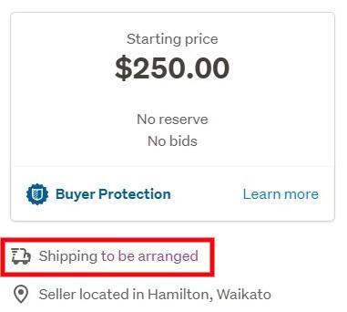 配送オプションは、オークションページ右側の、オークション価格が記載されている項目の下部にも表示されています。